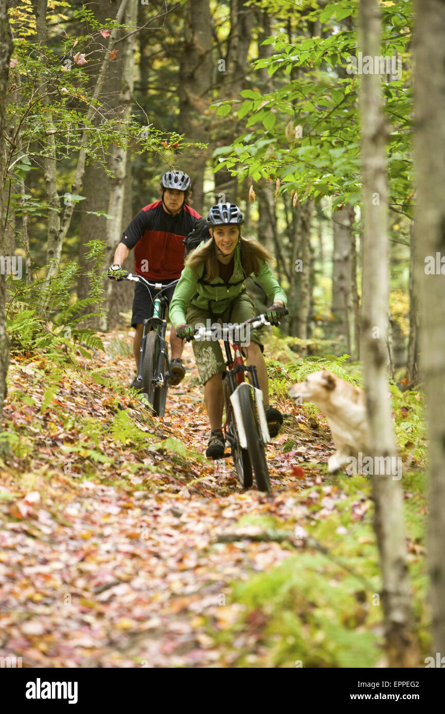 Mid adult woman and man mountain biking through the Green Mountians, on the longtrail in Stowe Vermont, USA - Stock Image