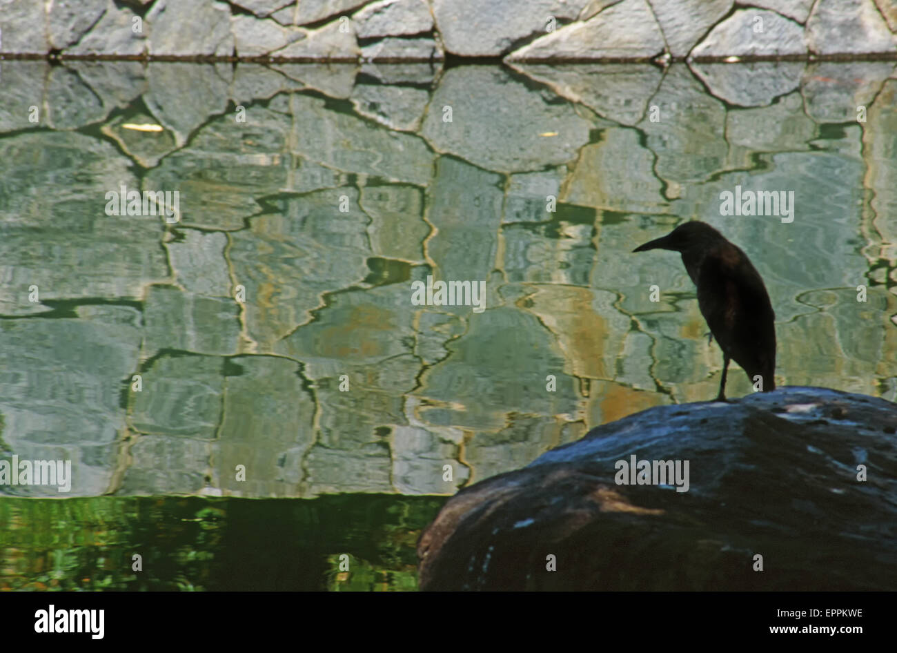 Stone wall and metal heron statue near a reflective pond at the Japanese Garden in the Sepulveda Basin, Los Angeles, - Stock Image