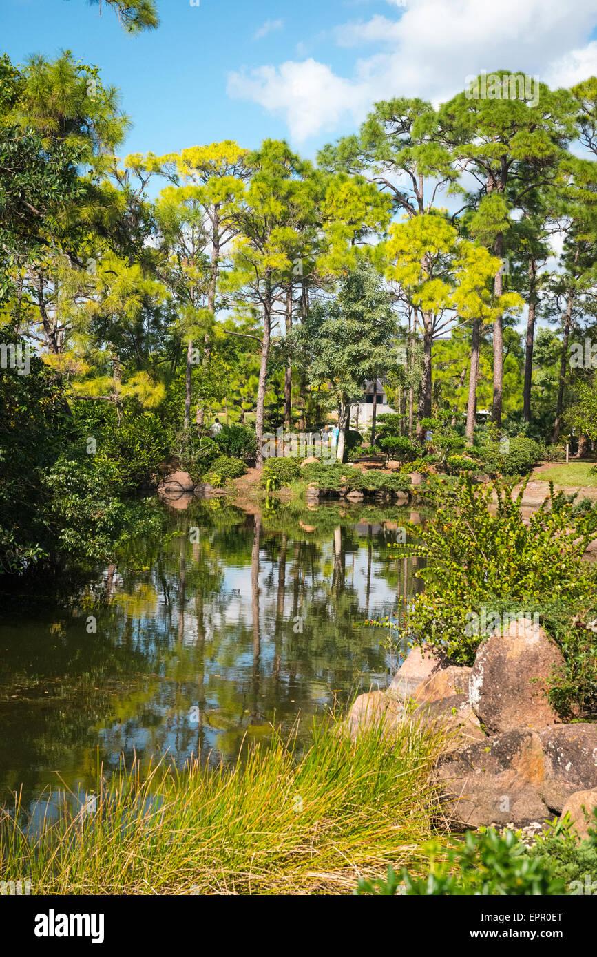 Florida , Del Ray Beach , Morikami Museum & Park , Roji-En Japanese Gardens of Drops of Dew lake detail rocks bushes Stock Photo