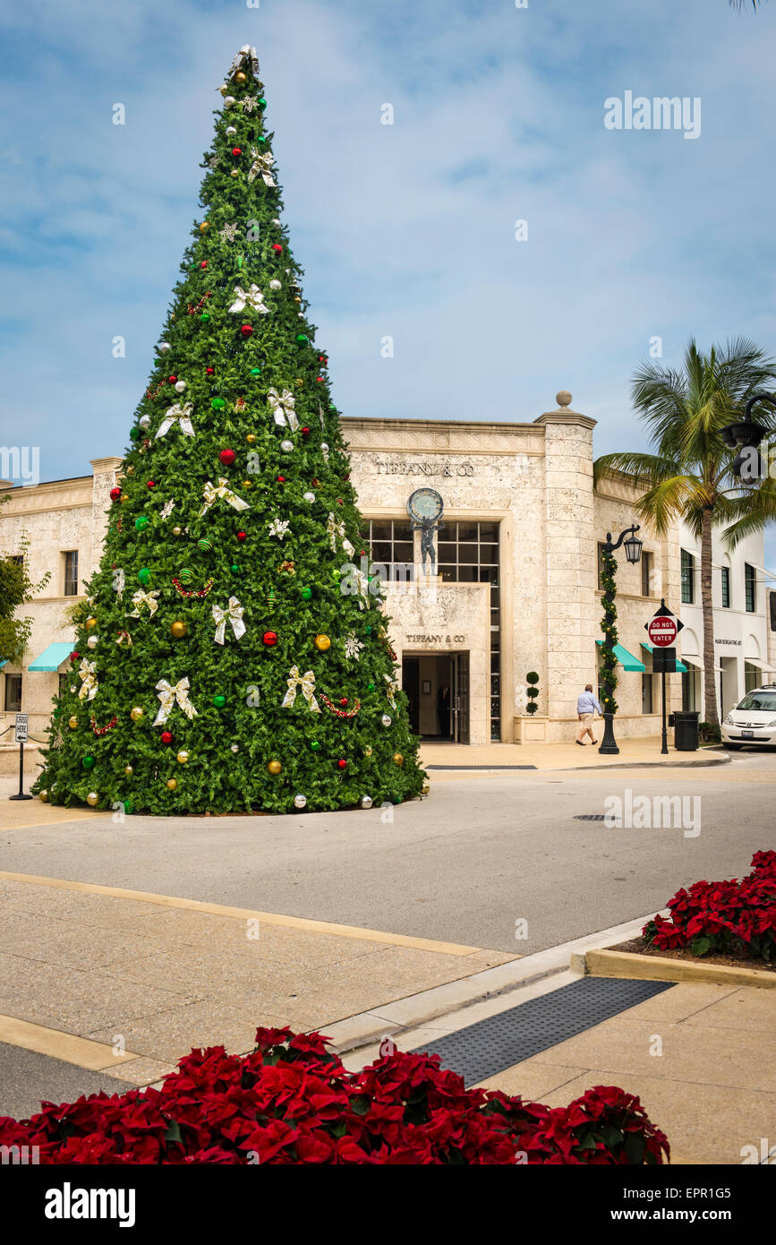 Florida Palm Beach Worth Avenue Christmas tree by Tiffany & Co jewelry store shop poinsettias - Stock Image