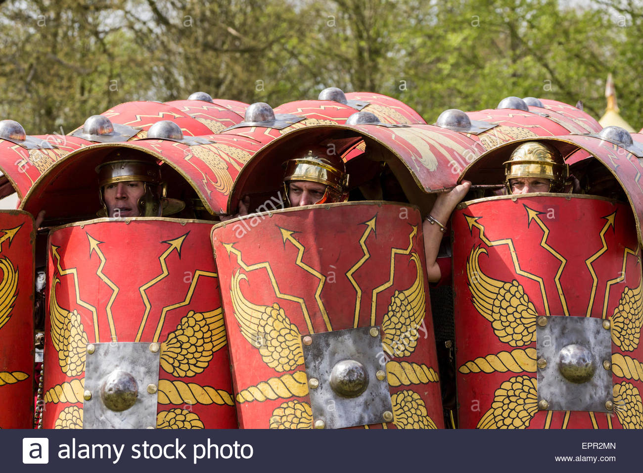 Roman Army Re-enactors demonstrating the tortoise battle formation. - Stock Image