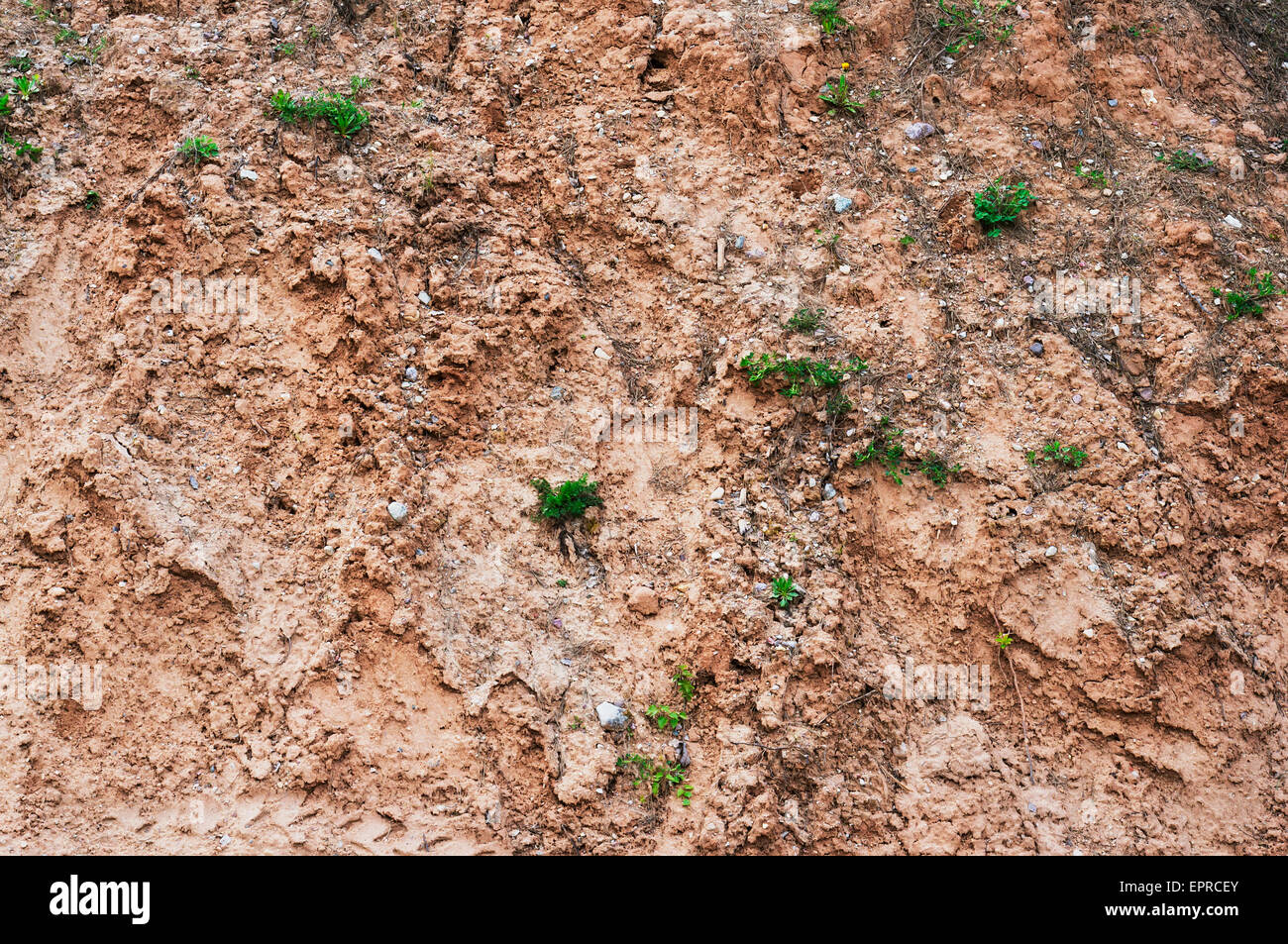 The dying Earth planet- a soil erosion concept background - Stock Image