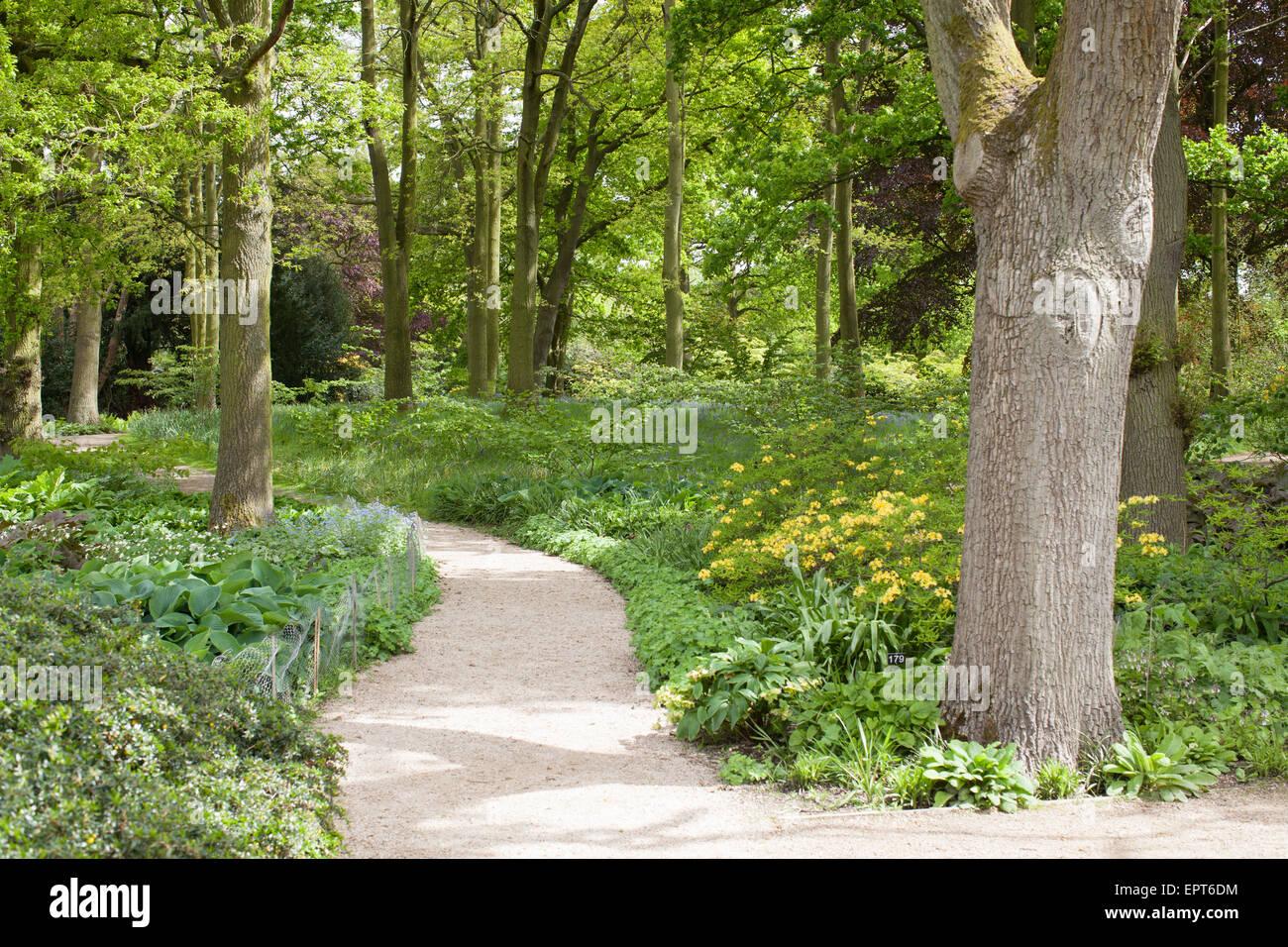 The garden at Dunham Massey National Trust property, Altrincham, UK. - Stock Image