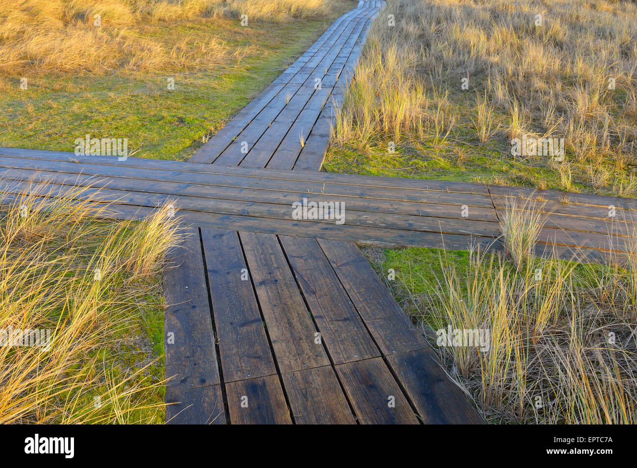 Crossing on Wooden Planks, Boardwalk Path between Dunes, Helgoland, North Sea, Island, Schleswig Holstein, Germany Stock Photo