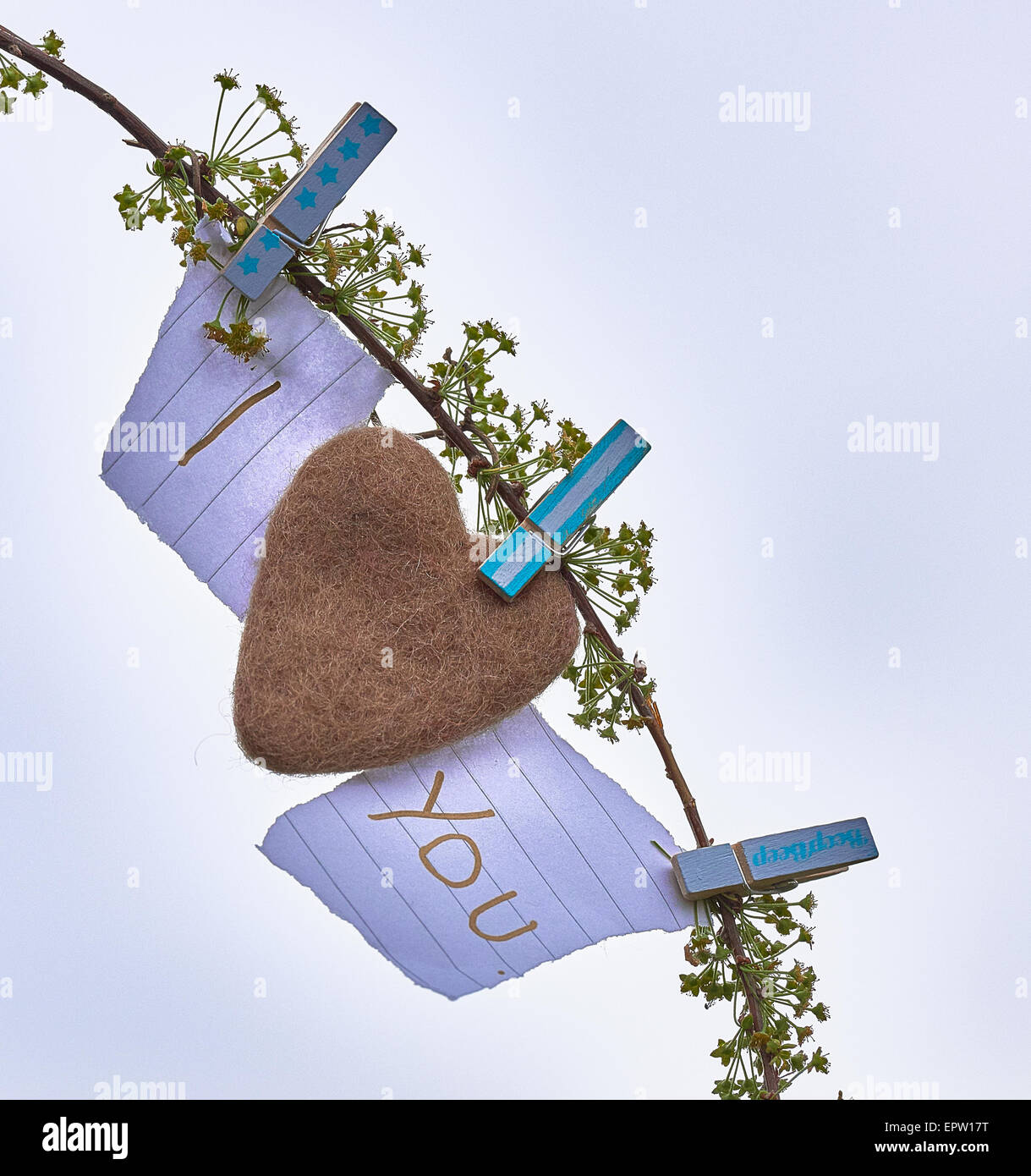 I love you heart hanging on a tree - Stock Image