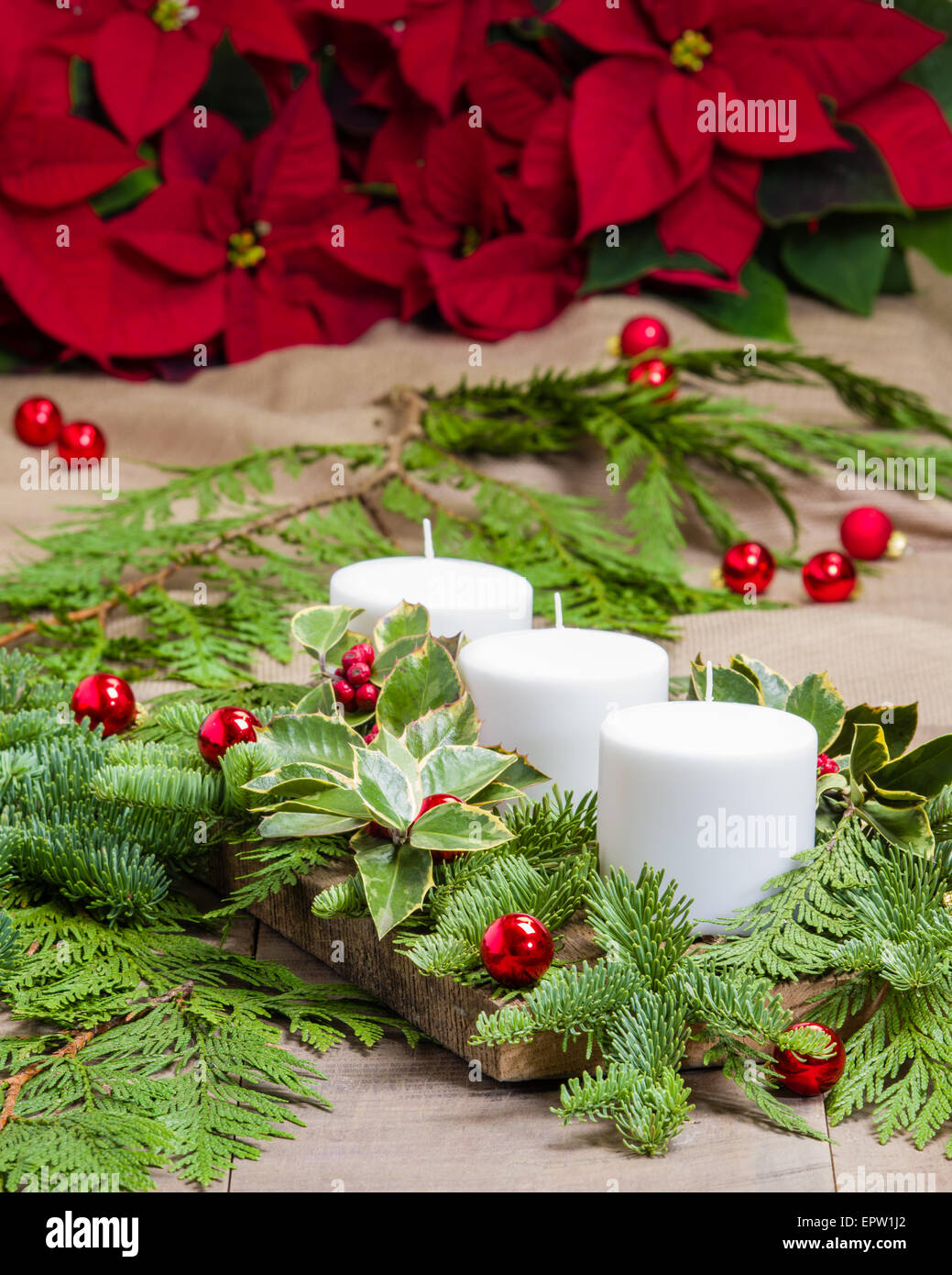 white candles in an evergreen christmas arrangement - An Evergreen Christmas