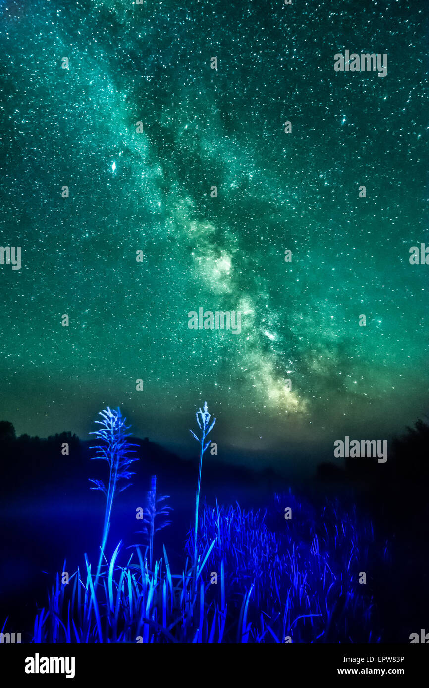 Nigt on foggy river- blue light cane with stars, deep sky and milky way background - Stock Image