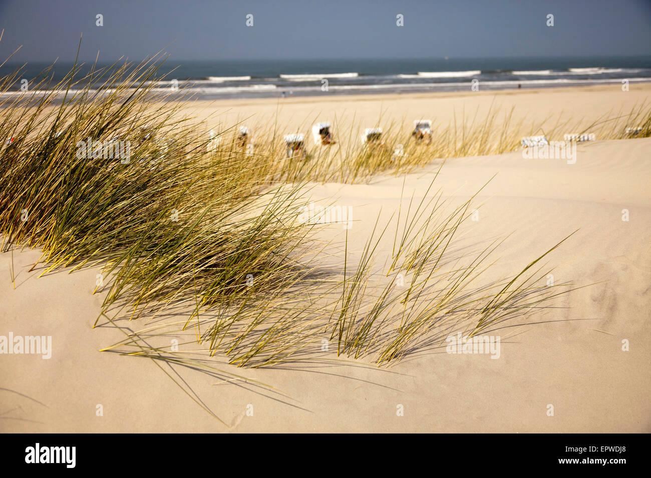 dunes and the main beach, East Frisian Island Spiekeroog, Lower Saxony, Germany Stock Photo