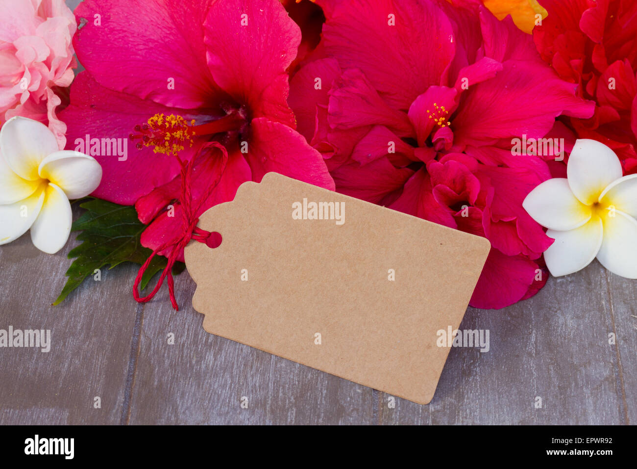 colorful hibiscus flowers with tag Stock Photo: 82930990 - Alamy