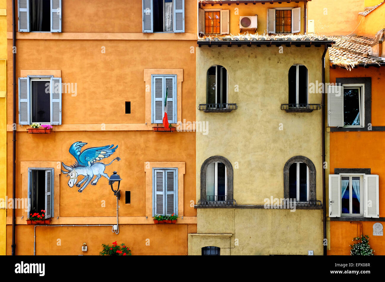 The flying donkey (1976), the first modern graffiti in Via Tor di Nona, Rome, Italy - Stock Image