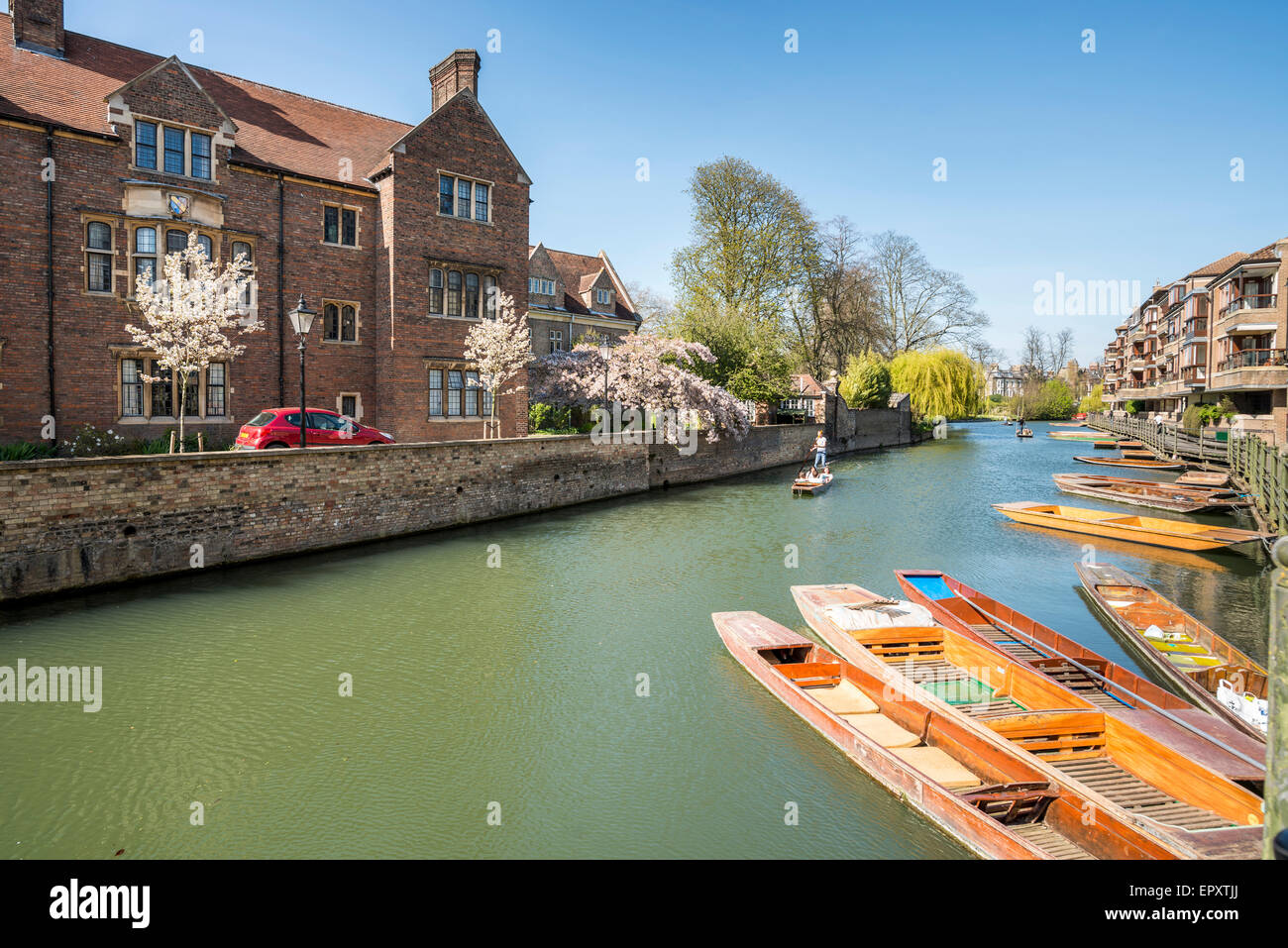 Punts at rest on the River Cam in Cambridge, UK - Stock Image