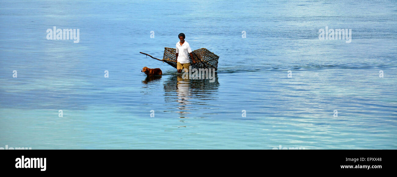 A fisherman with a fish trap walk in the sea with a dog, la digue, Seychelles - Stock Image