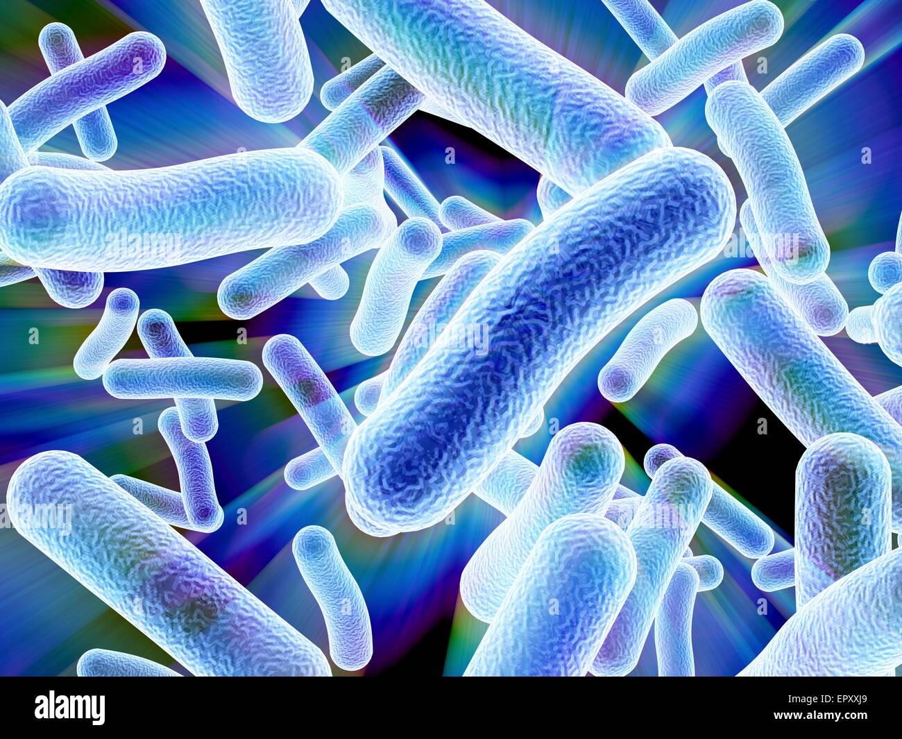 Computer artwork depicting a cluster of bacteria. - Stock Image