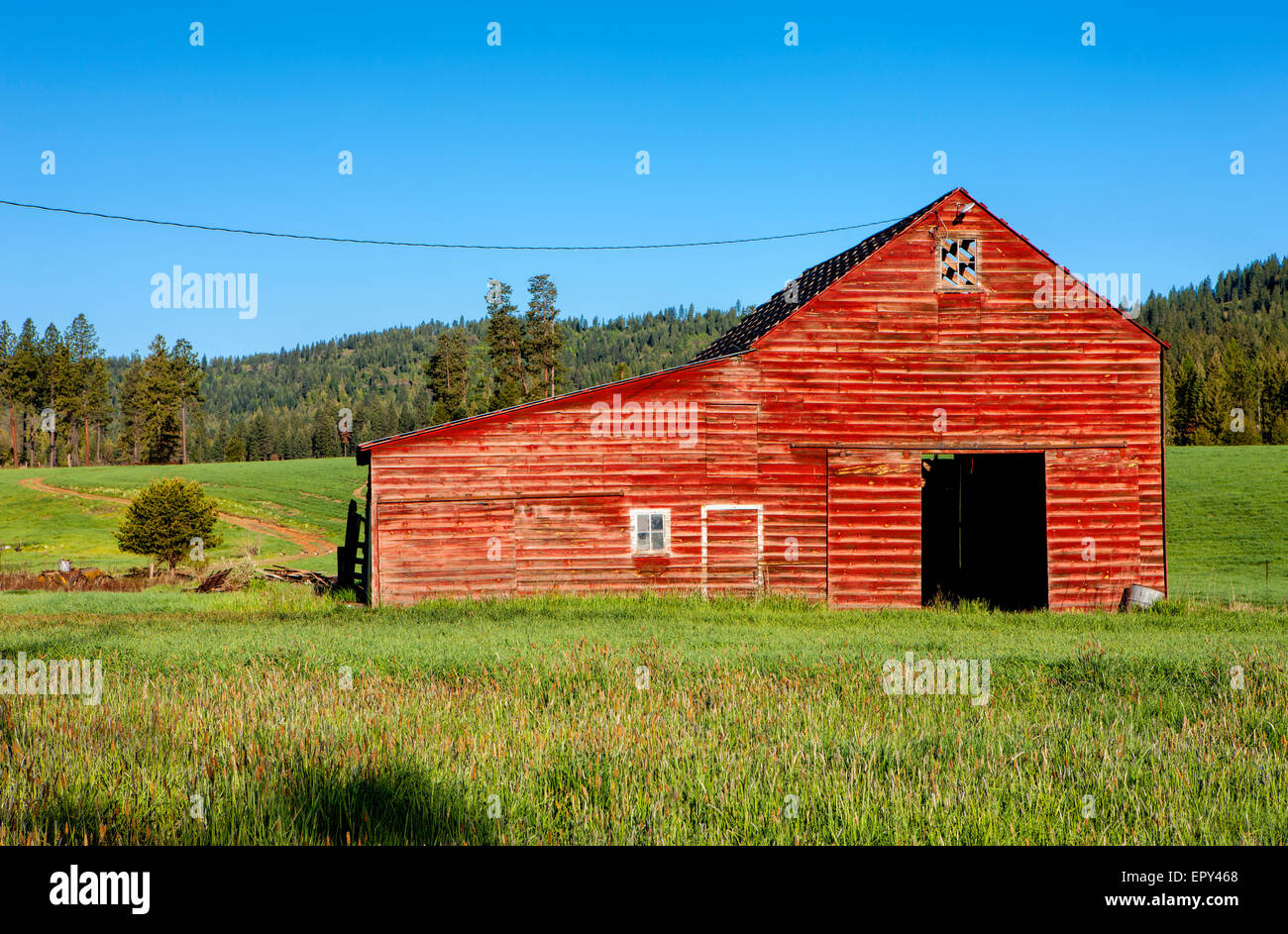 Red barn, green grass. - Stock Image