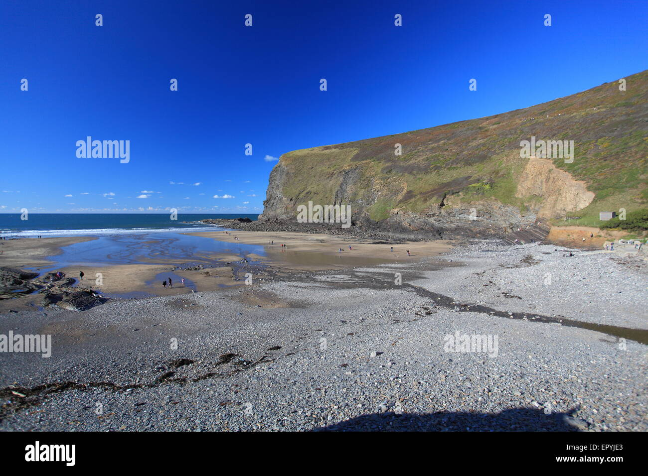 Crackington Haven beach on the north coast of Cornwall in England. - Stock Image
