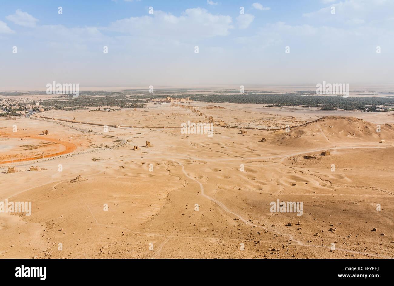 Palmyra as seen from Qal'at Ibn Maan - Stock Image