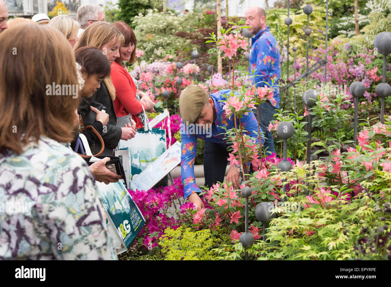 London, UK. 23 May 2015. Sell-off of plants at Hillier Nurseries. The 2015 RHS Chelsea Flower Show draws to a close Stock Photo