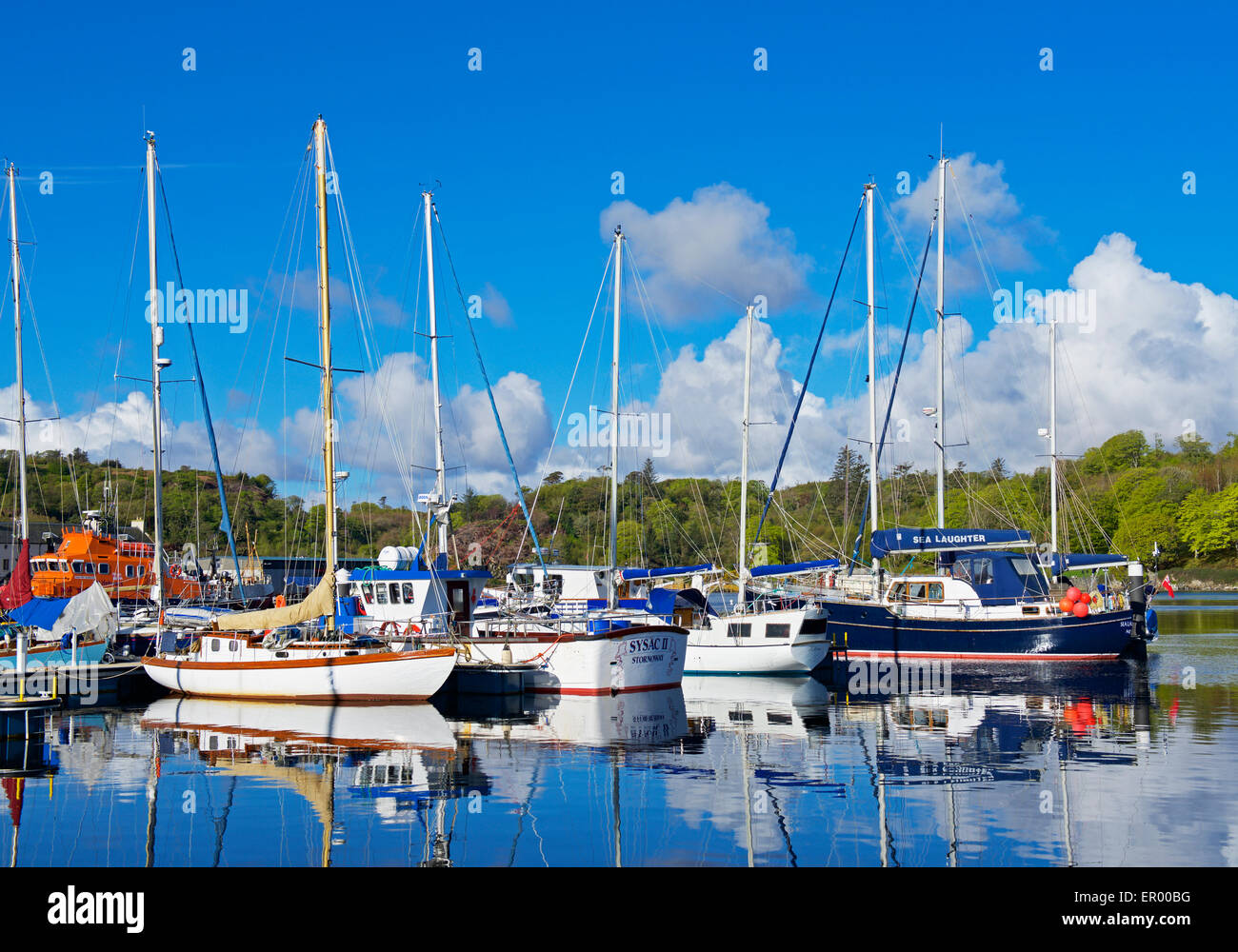The marina, Stornoway, Isle of Lewis, Outer Hebrides, Scotland UK - Stock Image