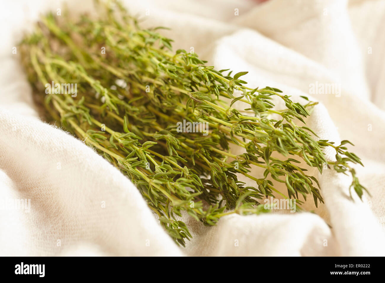 sprigs of fresh thyme - Stock Image