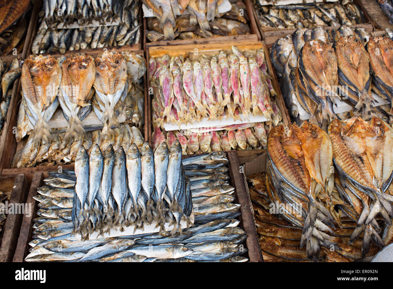 Fish Market Seafood Philippines Stock Photos & Fish Market Seafood
