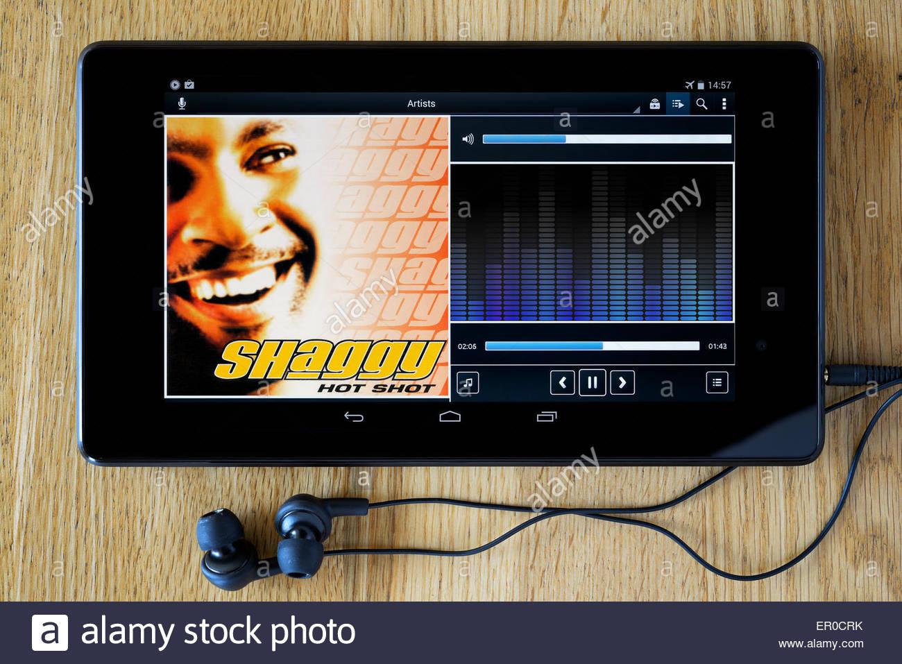 shaggy hot shot full album download
