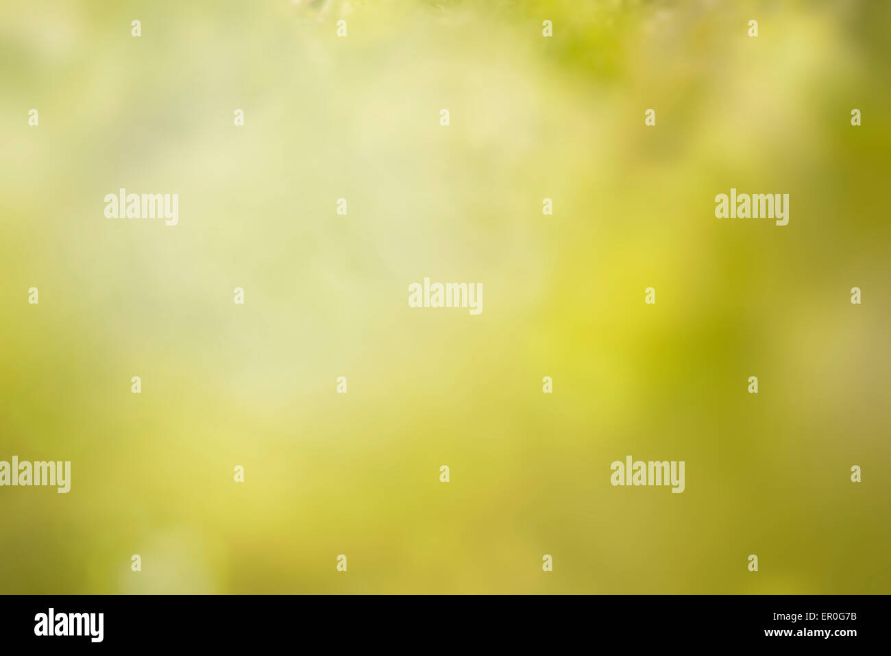 a blurred background inspired to nature - Stock Image