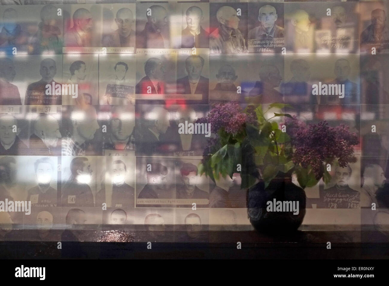 A bouquet of flowers  is seen through mugshots of prisoners at the the former KGB prison now the museum of Genocide - Stock Image