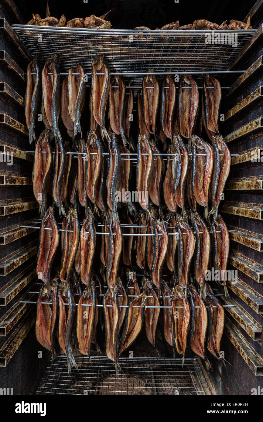 Smoked fish - fish that has been cured by smoking - Stock Image