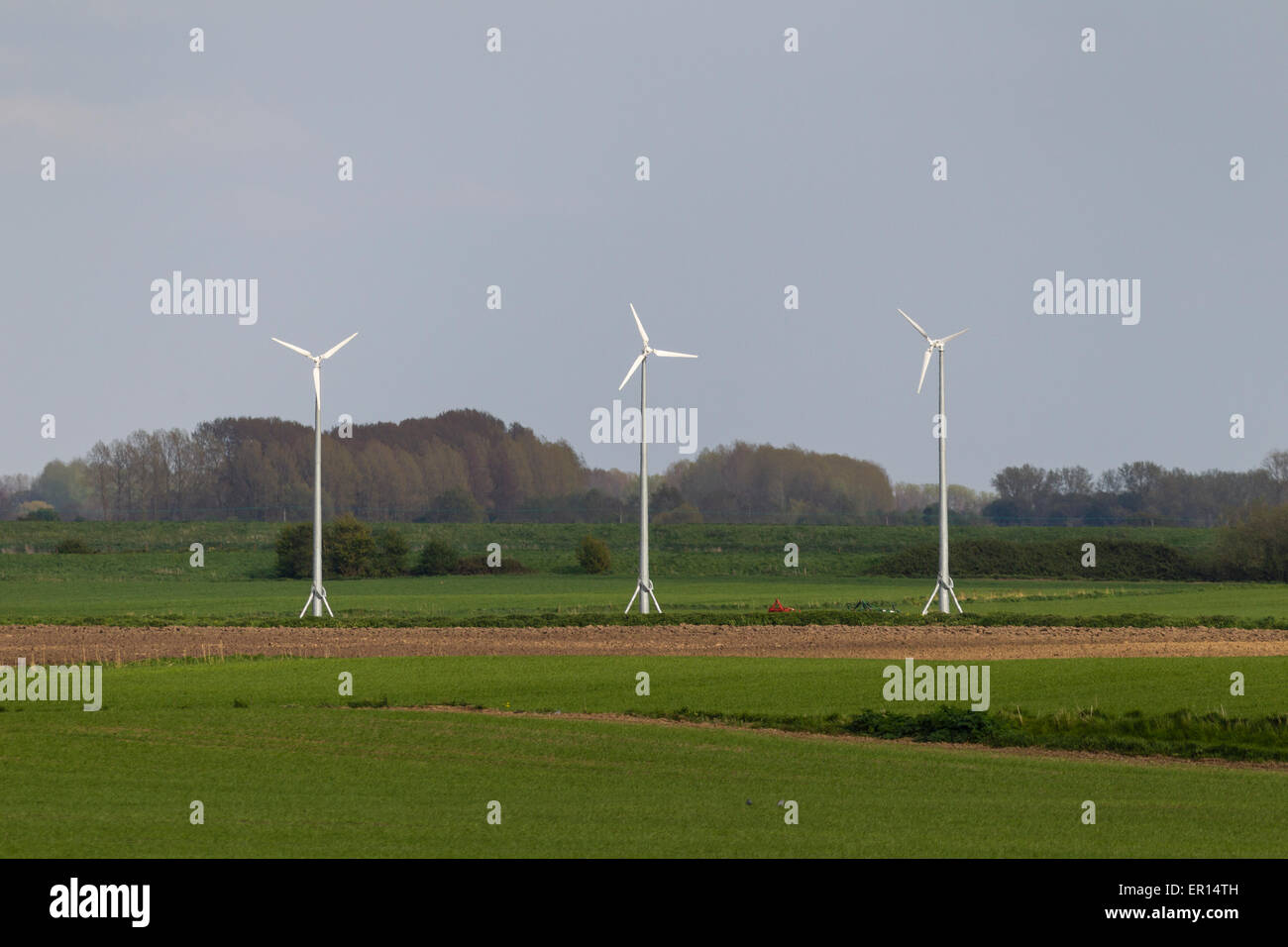 Wind turbines can be used for both generating electricity and pumping water to drain the land - Stock Image
