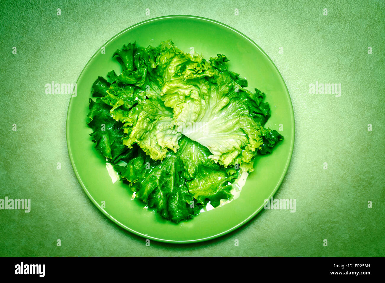 green salad leaves on green plate - Stock Image