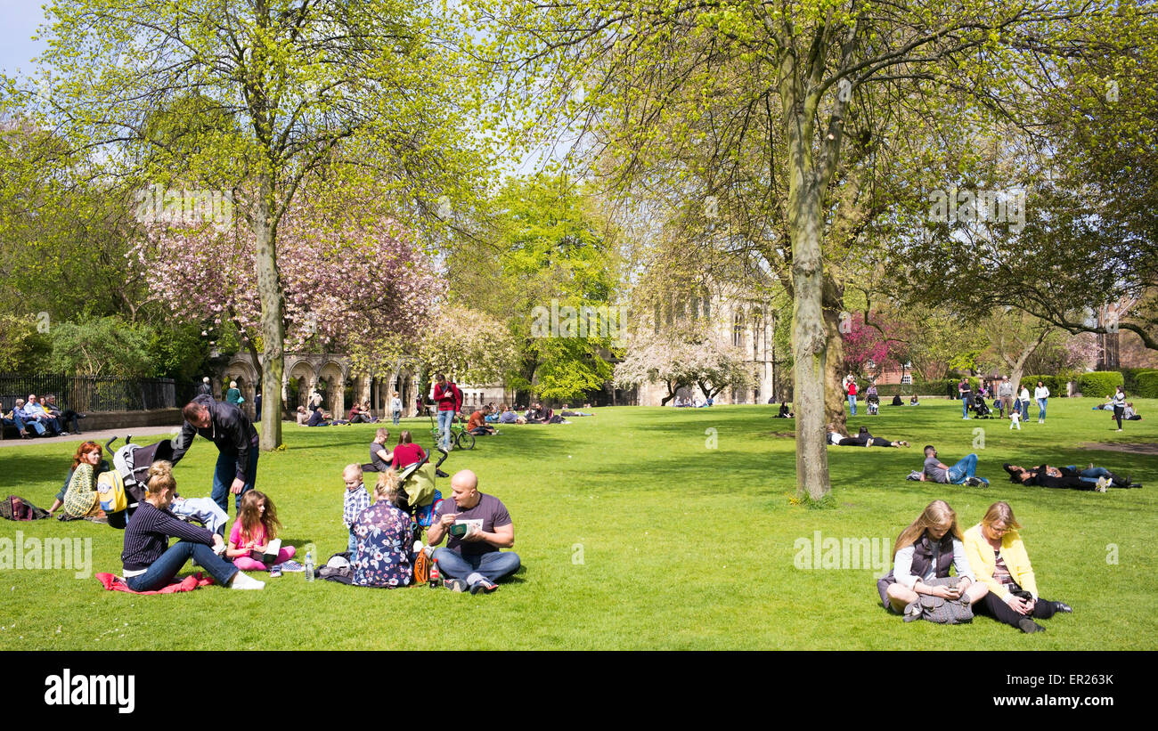 Family and other groups relaxing on Bank Holiday Monday, 2015, in Dean's Park, York, Yorkshire, England - Stock Image