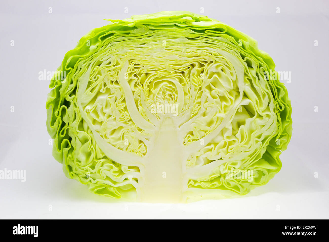 Fresh and green cabbage cut in half - Stock Image