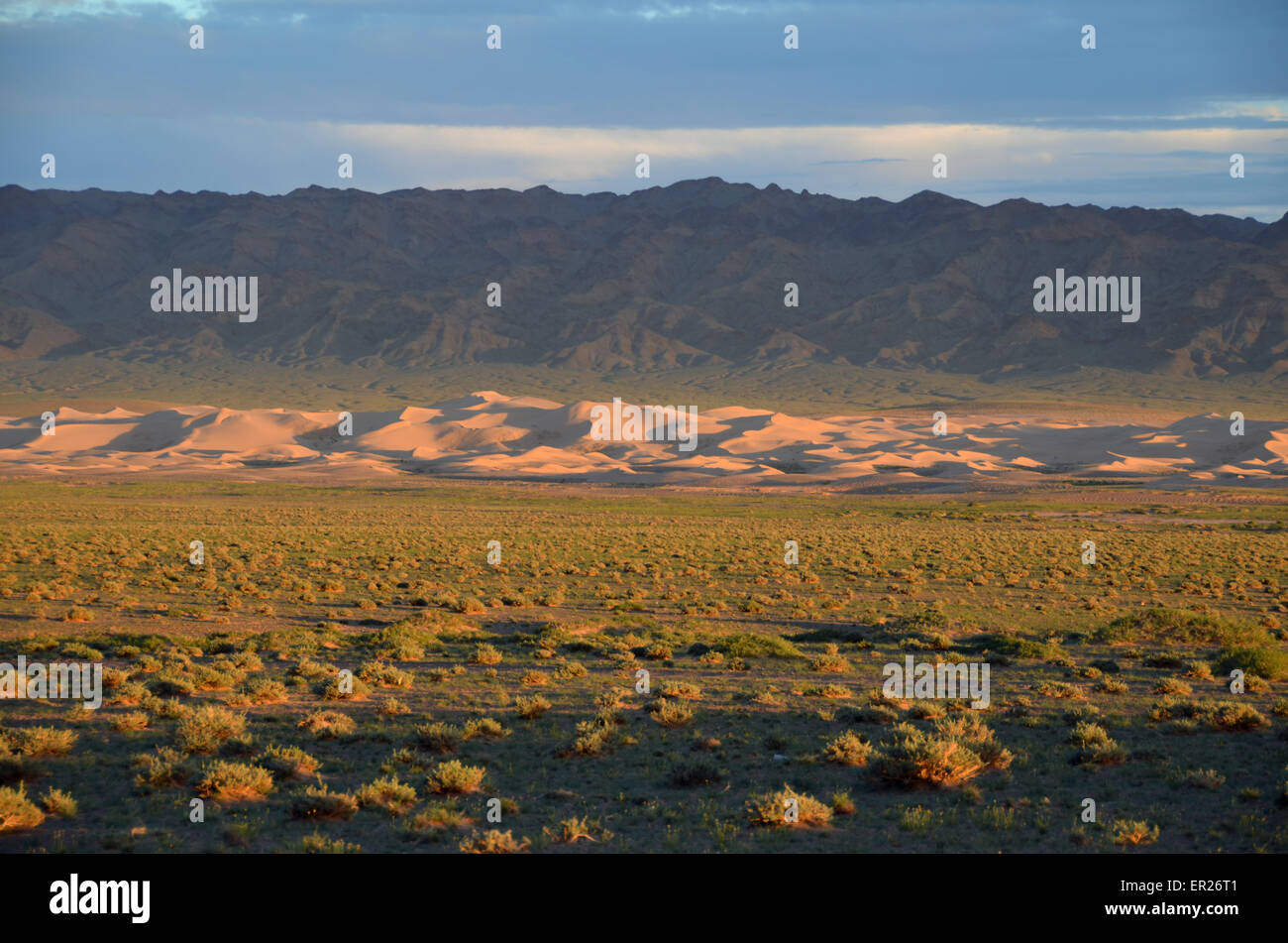 The Khongoryn sand dunes at sunset in the Gobi desert, Omnogovi province, southern Mongolia.lonely, emptyness - Stock Image