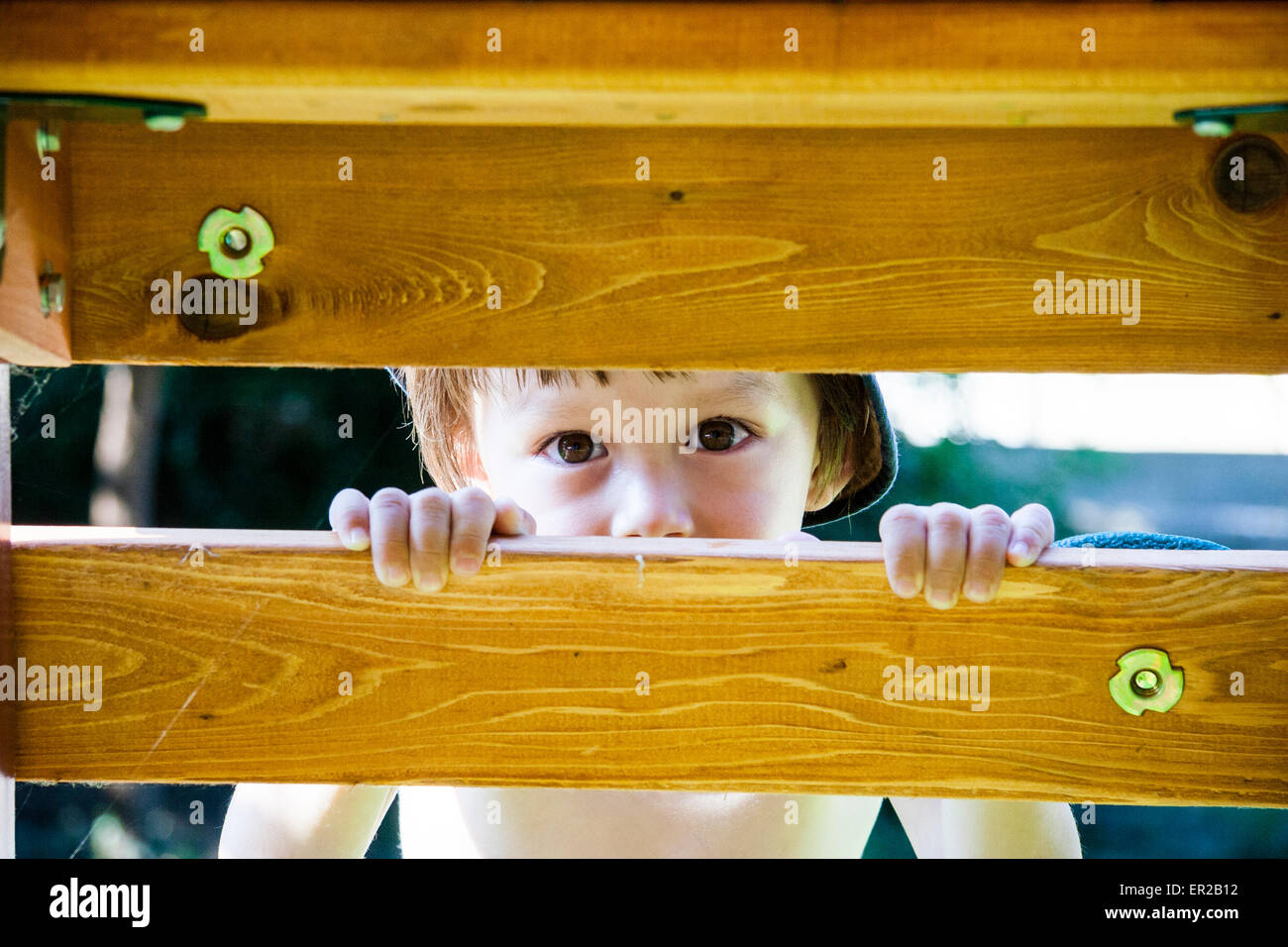 3 - 5 year old Caucasian child, boy. Outdoors in strong sunlight, looking through wooden planks of climbing frame - Stock Image