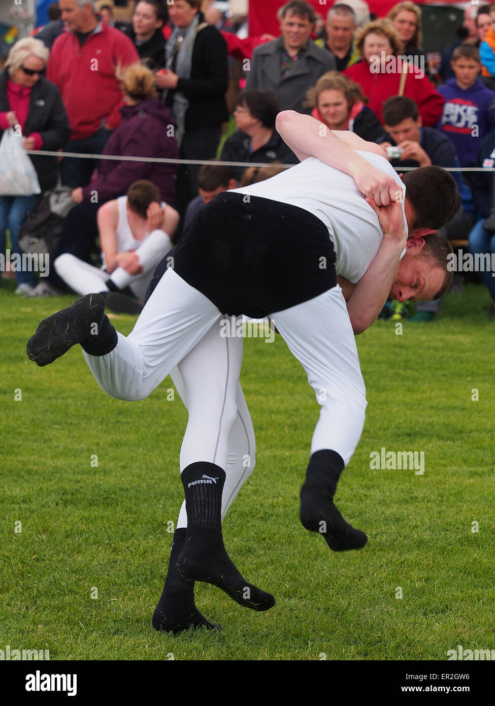Bywell, UK. 25th May, 2015. Cumberland and Westmorland Wrestling competition at the Northumberland County Show, - Stock Image