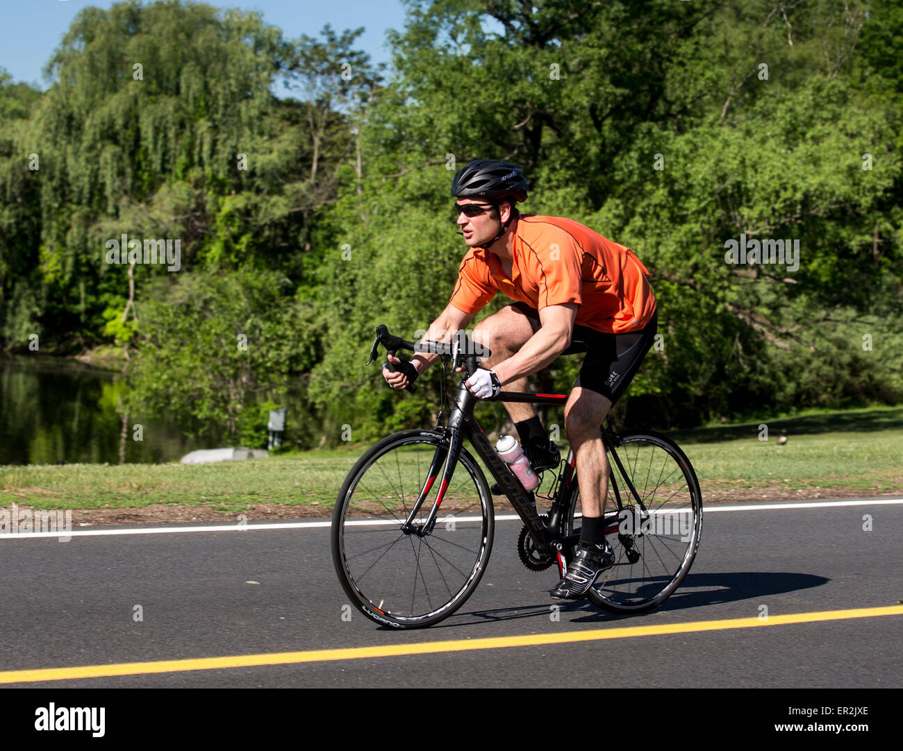 Man riding a road bike on a paved roadway Stock Photo: 83037318 - Alamy