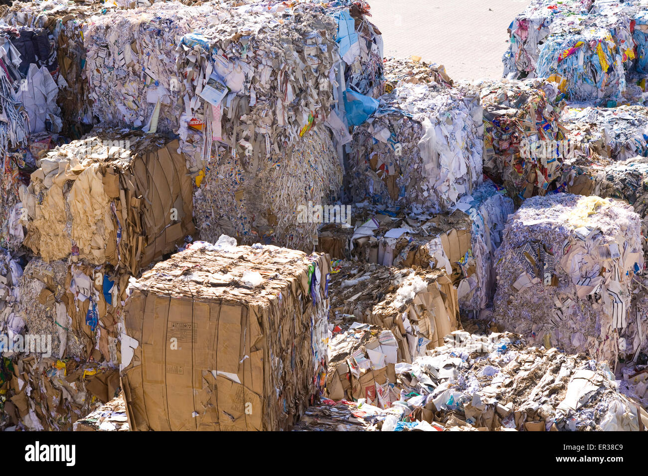 Europe, Germany, Ruhr Area, Dortmund, loading of recovered paper at a paper recycling company at the harbour Dortmund, bales of  Stock Photo