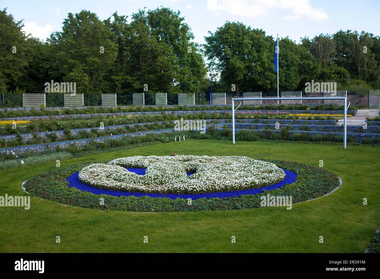 Europa, Deutschland, Nordrhein-Westfalen, Ruhrgebiet, Gelsenkirchen, Friedhof fuer Fans des Fussballclubs FC Schalke - Stock Image