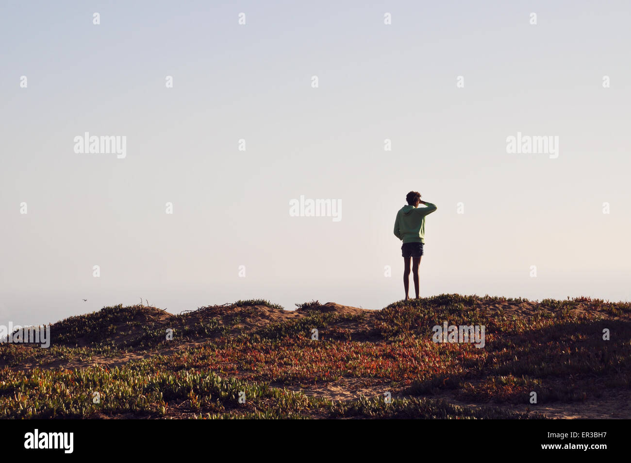 Rear view of girl looking out to sea - Stock Image