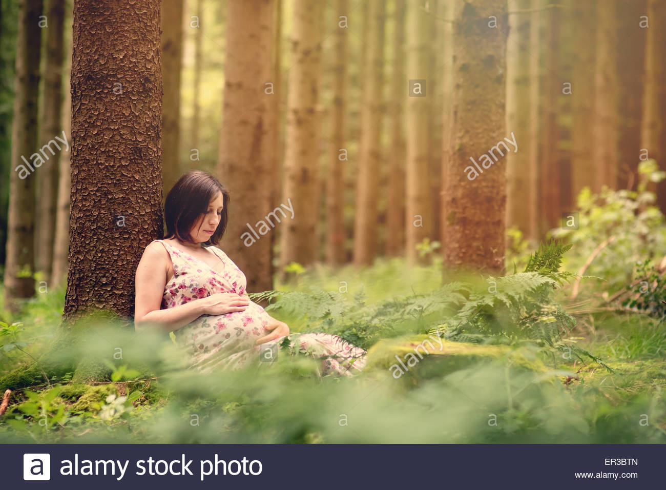 Pregnant woman leaning against a tree in the forest - Stock Image