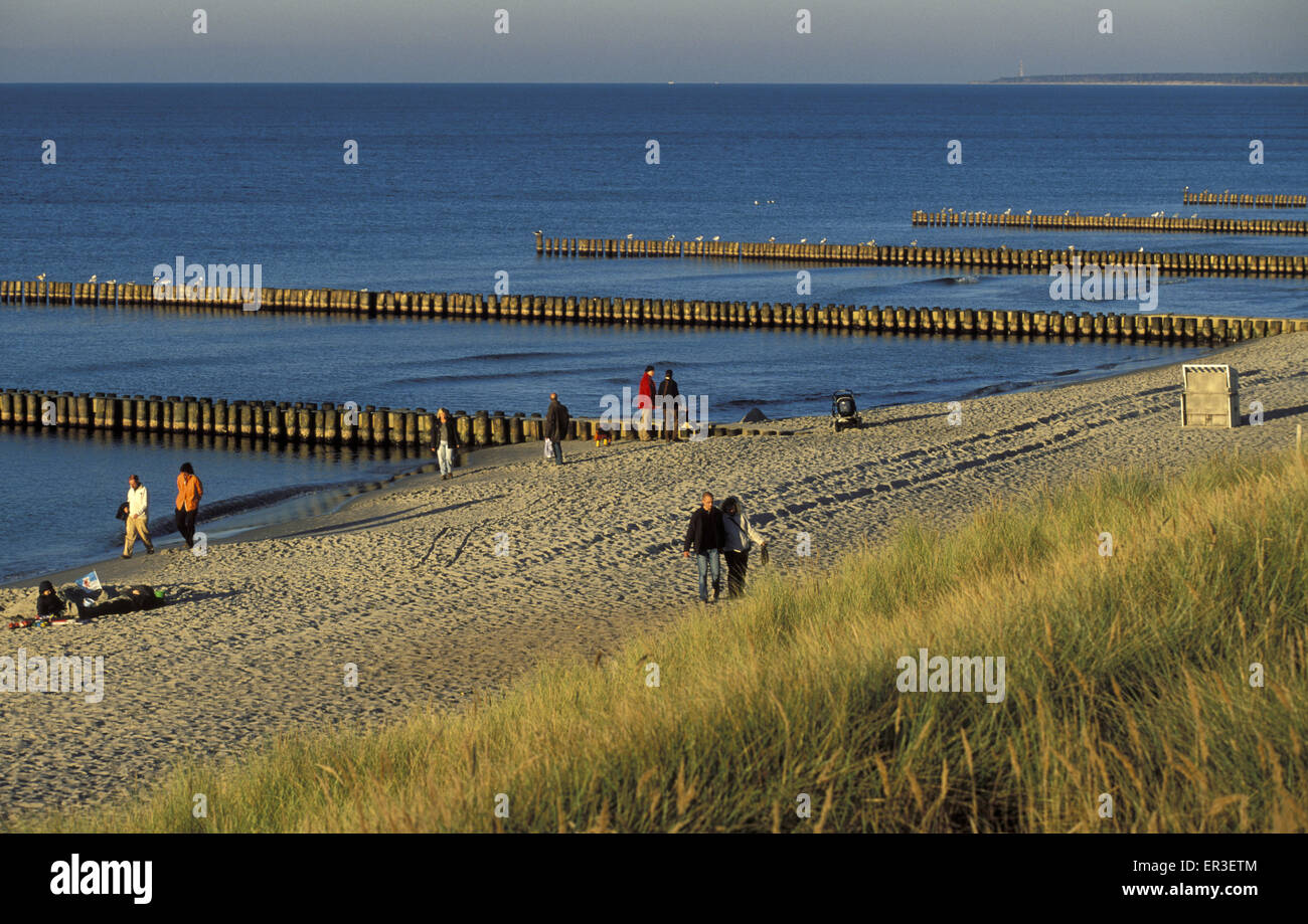 DEU, Germany, Mecklenburg-Western Pomerania, the beach with groins at Ahrenshoop at the Baltic Sea.  DEU, Deutschland, - Stock Image
