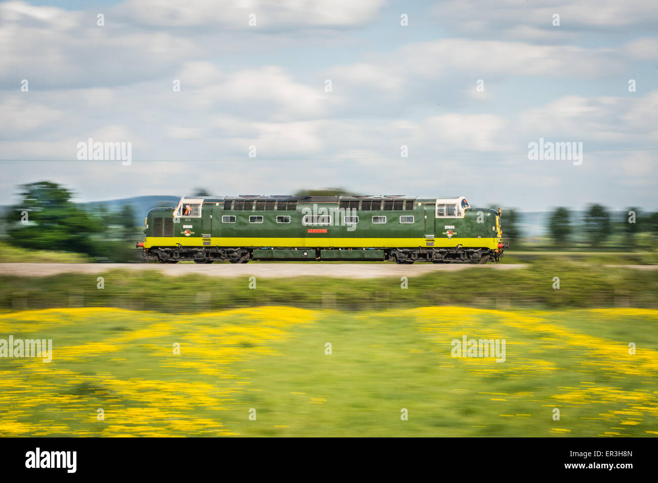 Deltic, No. D9009 'Alycidon' powers along the Cross Country Route at Natton south of Ashchurch taken at - Stock Image