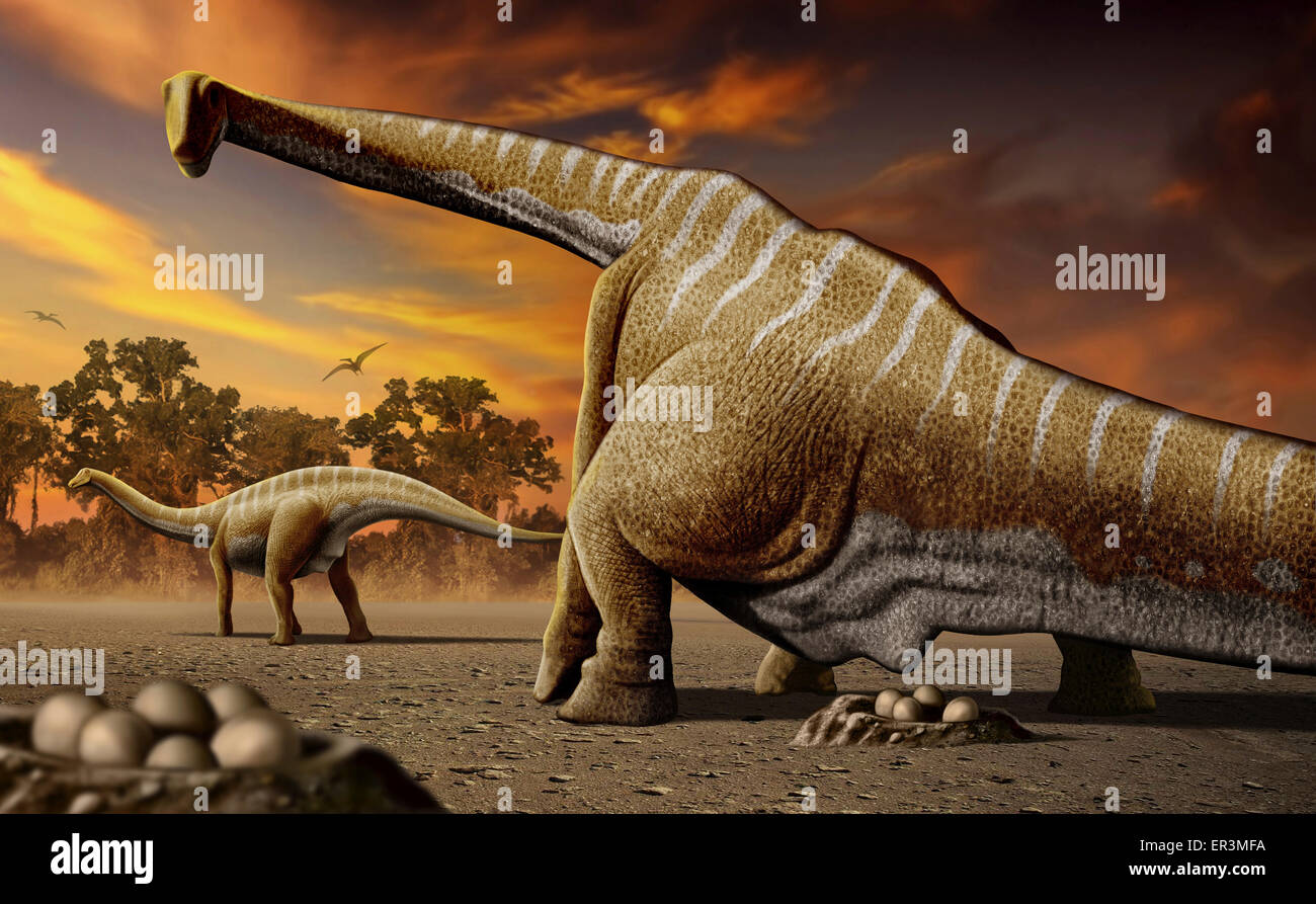 A female Apatosaurus laying her eggs in nest. Stock Photo