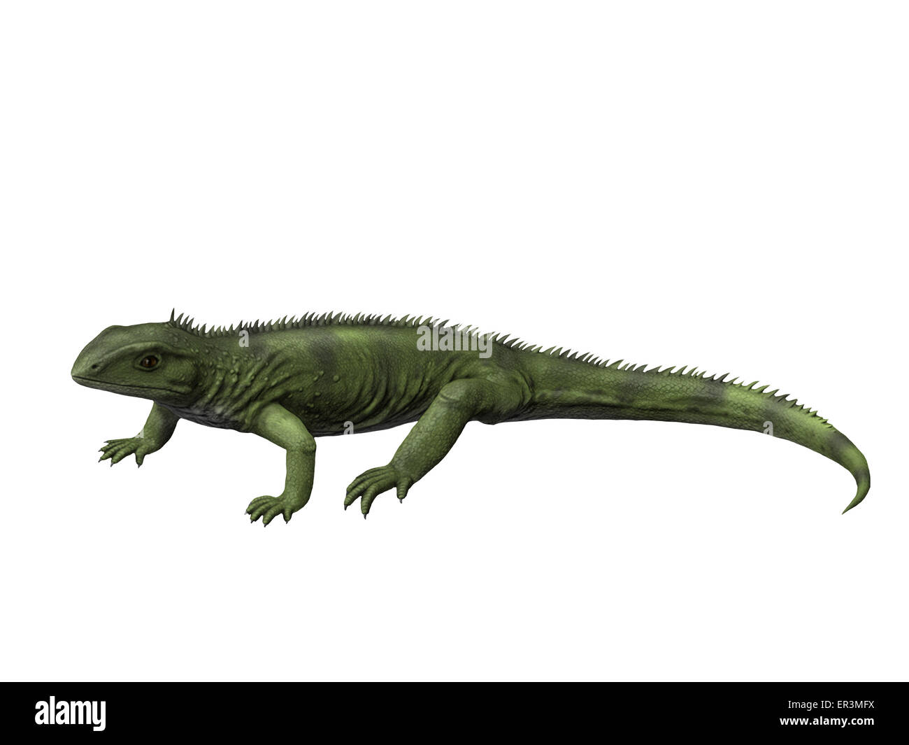 Gephyrosaurus is an extinct Rhynchocephalian from the Early Jurassic period of Wales. - Stock Image