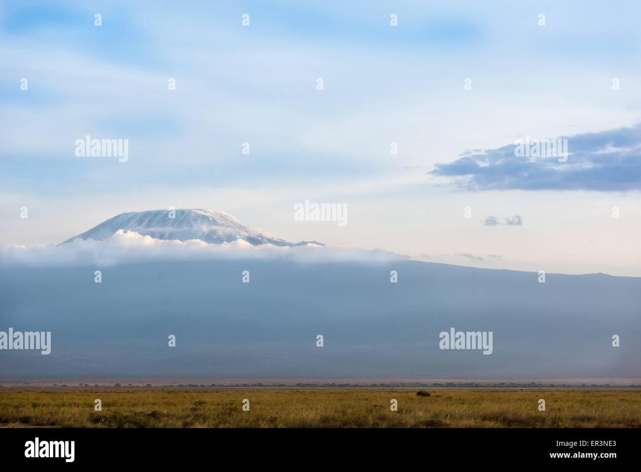 Kilimanjaro the big mountain in Africa - Stock Image