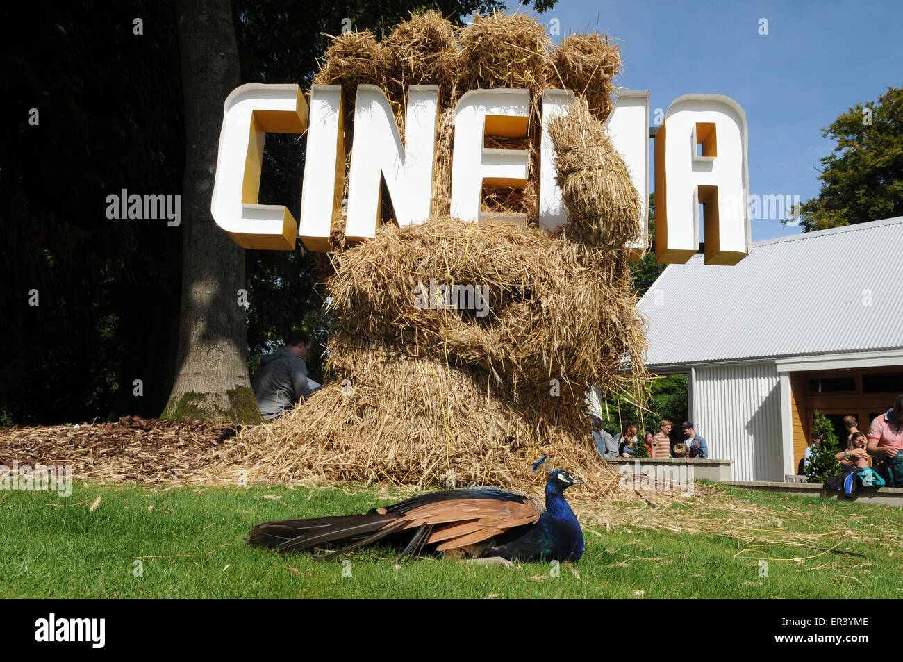 Cinema - with peacock in residence - at End of the Road Festival 2014, Larmer Tree Gardens south Wiltshire. - Stock Image