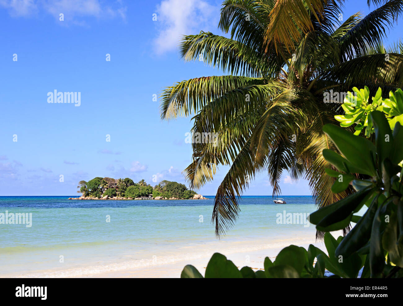 Island Chauve Souris in the Indian Ocean Stock Photo