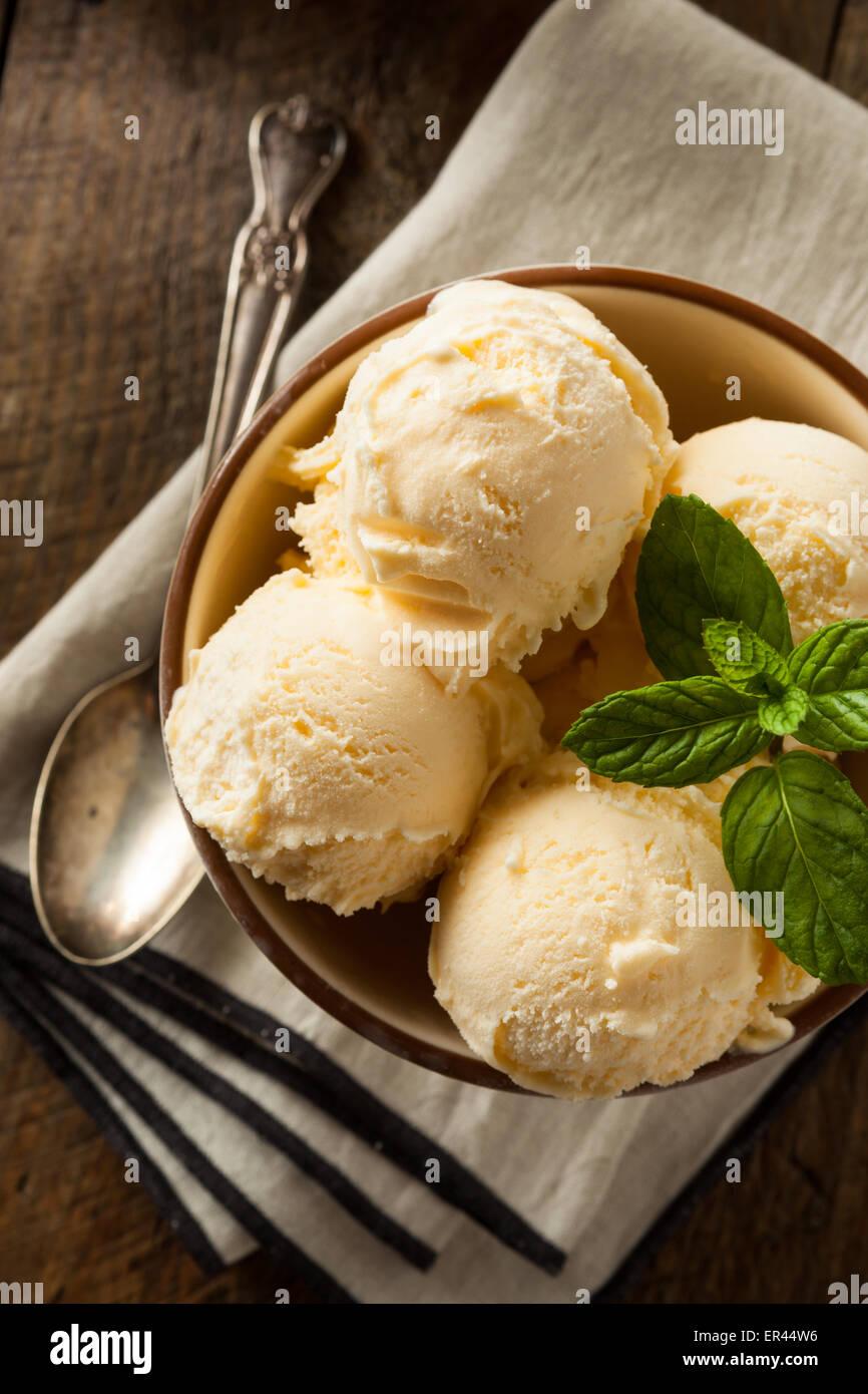 Homemade Organic Vanilla Ice Cream with Mint - Stock Image