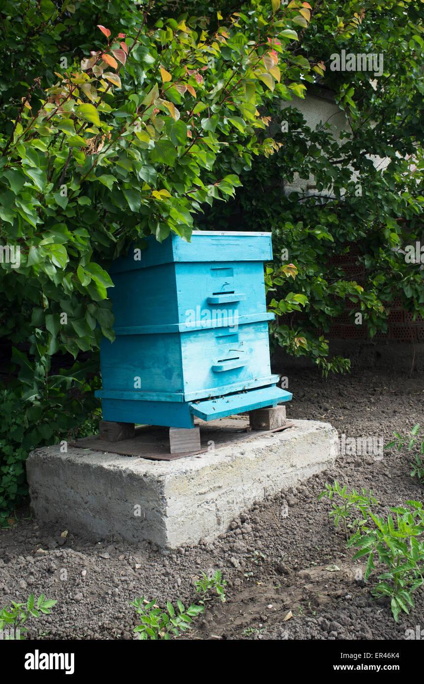 Beehive - Stock Image