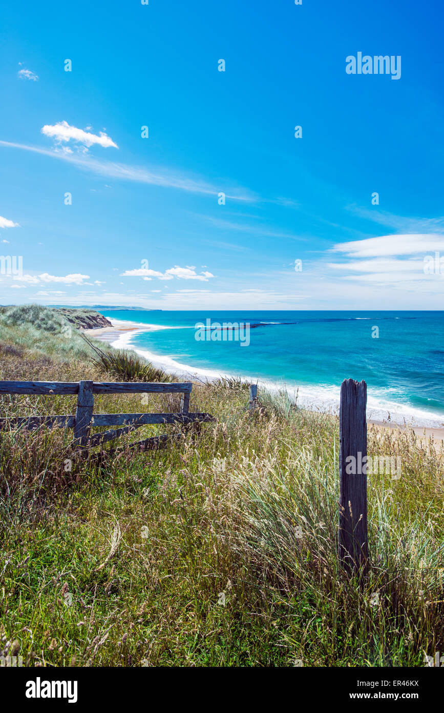 Fence and post in The Catlins Forest Park in south east New Zealand - Stock Image